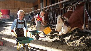 Kinder helfen bei der Stallarbeit