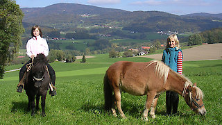 Kinder beim Ponyreiten im Bayerischen Wald